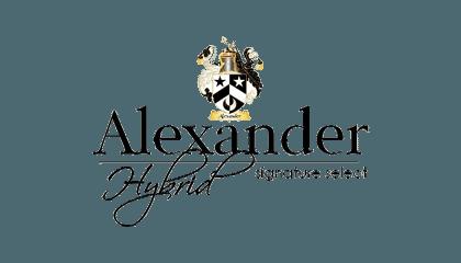 Alexander Hybrid Image